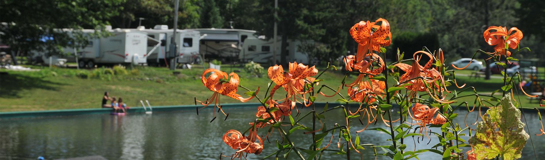 Bienvenue au Camping Lac-Saint-Michel en Mauricie
